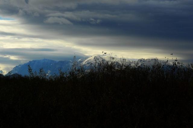 Bucegi, Tara Barsei, munte Brasov, Castor fiber, castor Brasov, peisaj Tara Barsei